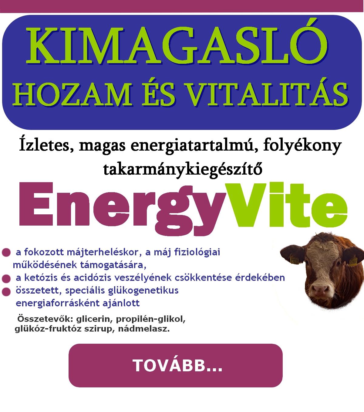 energyvite