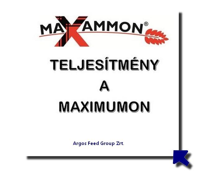 maxammon-magyarorszag